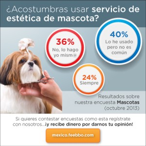 mini-infografia-feebbo-encuesta-mascotas-Mexico_01