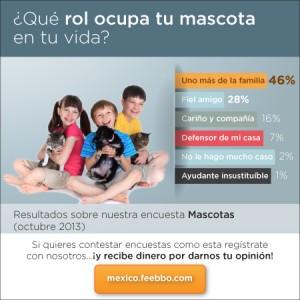 mini-infografia-feebbo-encuesta-mascotas-Mexico_02