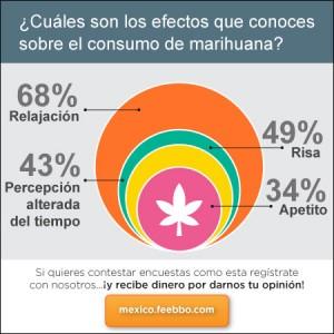 mini-infografia-feebbo-encuesta-marihuana-Mexico_01