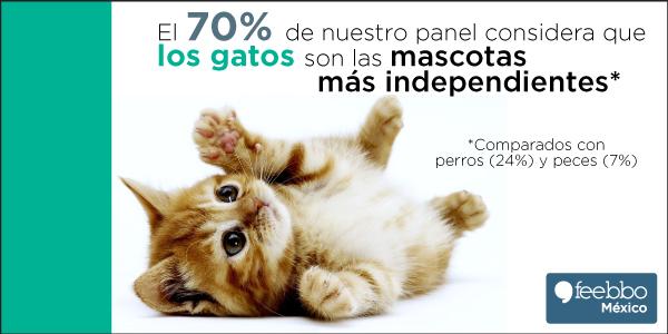 blog-infografia-feebbo-encuesta-perro-Vs-gato-Vs-pez_01