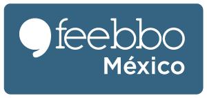 feebbo-encuestas-online-blog_04