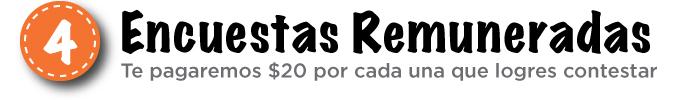 04_Encuestas-Remuneradas